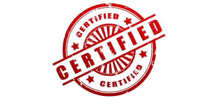 Modelo de Certificação - O Analista de Modelos de Negócios